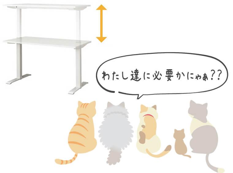 上下昇降するデスクを眺める猫たち「わたし達には必要かにゃぁ?」と疑問に思っている